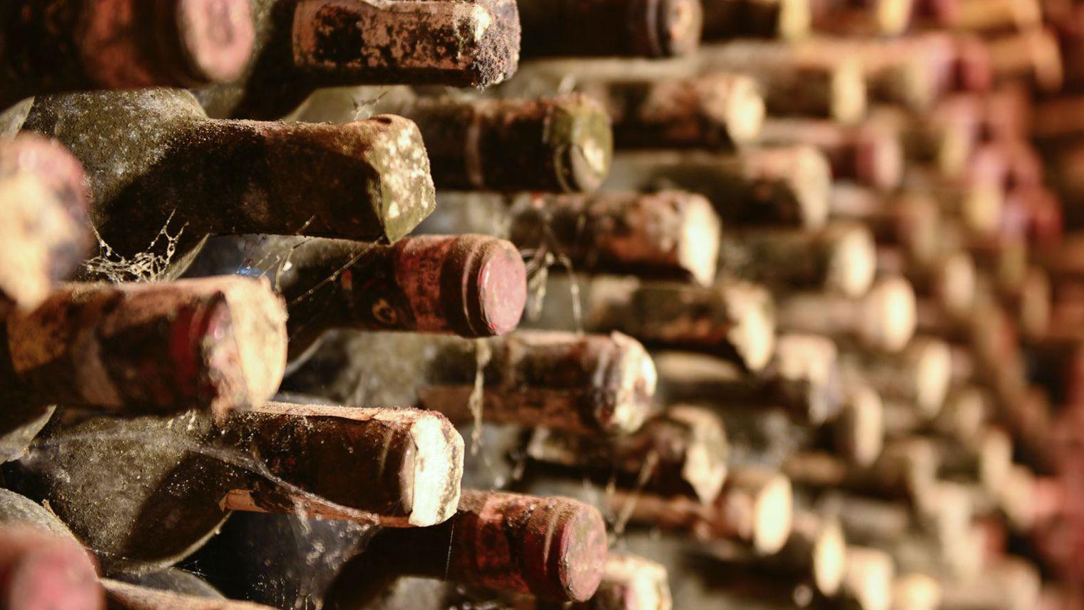 Boire du vin : je vous explique comment faire pour le déguster